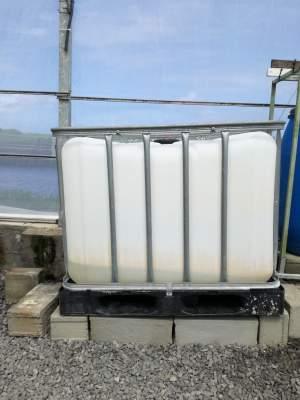 IBC (Intermediate Bulk Container) - Plastic on Aster Vender