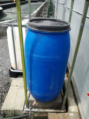 150 L Drum with lid - Plastic on Aster Vender