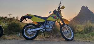 SUZUKI DR-Z 250 - Sports Bike on Aster Vender