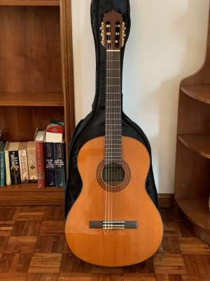 Guitar - Accoustic guitar on Aster Vender