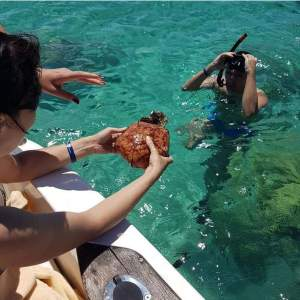 Snorkeling in Mauritius - Snorkeling on Aster Vender