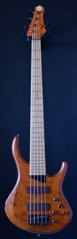 GUITARE BASSE MTD 5 STRING - Bass guitar on Aster Vender