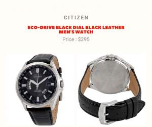 Citizen Watch - Others on Aster Vender