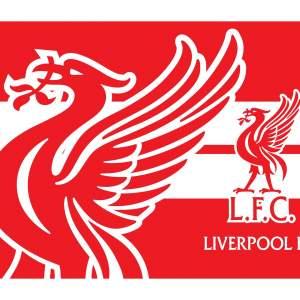Liverpool Flag - Events on Aster Vender