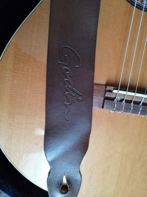 Electro acoustic guitar (godin LA patrie)  - Accoustic guitar on Aster Vender
