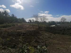 Land for sale at Calodyne - Land on Aster Vender