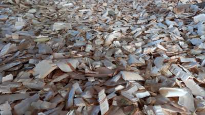 Woodchips - Plants and Trees on Aster Vender