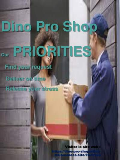 DINO PRO SHOP - Home repairs & installation on Aster Vender