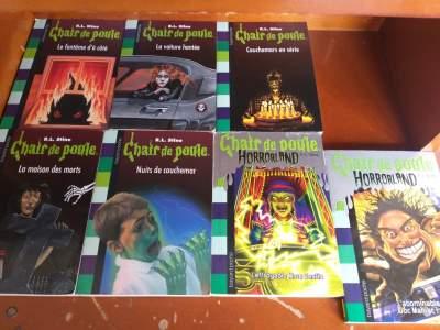 Chair de Poule - Children's books on Aster Vender