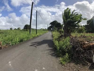 TERRAIN RÉSIDENTIEL - 47 PERCHES - POSTE DE FLACQ - Land on Aster Vender