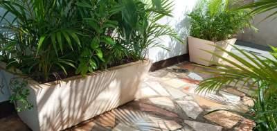 2 gros pot de pot fleur en béton avec les plantes - Other Decorations on Aster Vender