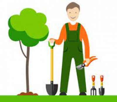 Cherche Jardiner - Cleaning services on Aster Vender