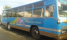 Bus for sale - Standard bus on Aster Vender
