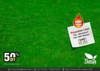 Passpalum Lawn Promo - 50% Off - Plants and Trees on Aster Vender