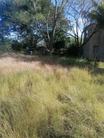 Land for sale at Calodyne - Land on Aster Vender
