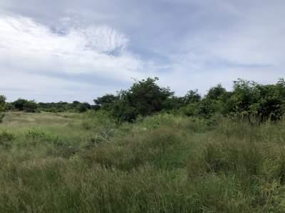 Grand Gaube Residential land - 40 Poles - Land on Aster Vender