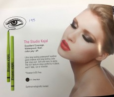 The Studio Kajal - Eye shadow on Aster Vender