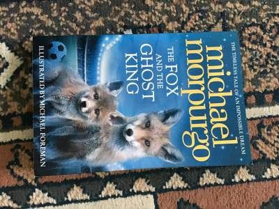 The fox and the Ghost king  - Fictional books on Aster Vender