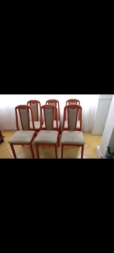 6 dining chairs  - Dining Chairs on Aster Vender
