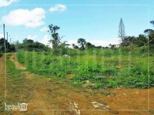 7 perches land in  Petit verger, St pierre  - Land on Aster Vender