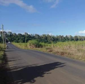 PriceDiscounted - 1 arpent 70.97 perches -Beau Plateau, Cottage  - Land on Aster Vender