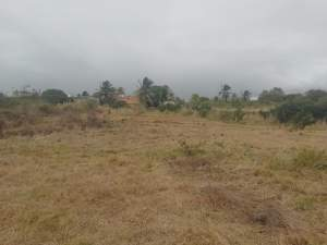 37 perches  land at Kashmir Road, Melville @ Rs 120,000 / perche - Land on Aster Vender