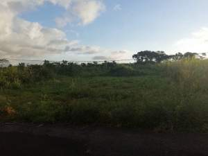 45 perches land in St Julien D'Hotman @ Rs 85,000/perche slightly nego - Land on Aster Vender