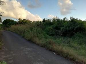 54.26 perches  land - Sinfat, Melville @ Rs 90,000/perche nego