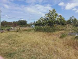1 arpent 36.55 perches land in Royal Rd, Sottise @ Rs 220,000/perche  - Land on Aster Vender