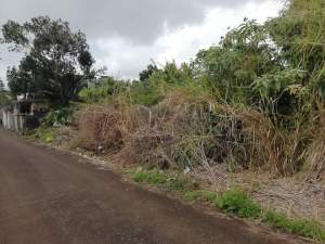 2 plots of 14.5 perches at Jankee Road, Gokoola @ Rs 85,000/perche - Land on Aster Vender