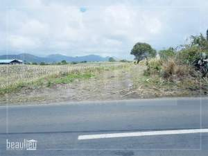 41 Perches,  Agricultural land, Bel Air - Land on Aster Vender
