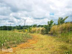 *Residential land of 25 perches,  Pont Praslin,Mare D'Austra - Land on Aster Vender