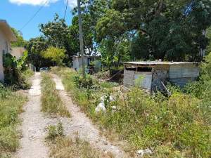 4 residential lots for sale in Nehru Nagar,Flacq - Land on Aster Vender