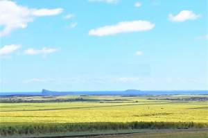 UNIQUE OPPORTUNITY: Large plot of land with breathtaking views of the  - Land on Aster Vender