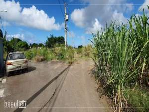 Two residential lands of 7 perches each are for sale in Bel Air, Flacq