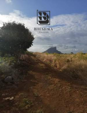 Plot for sale in Vacoas - Agricultural