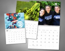 Calendars on order - Graphic design on Aster Vender