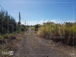 1 A 22 Ps Residential land, St Antoine- Goodlands