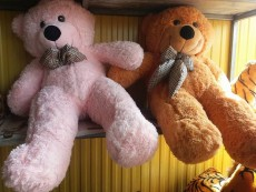 Peluche for sale - Other Indoor Sports & Games on Aster Vender