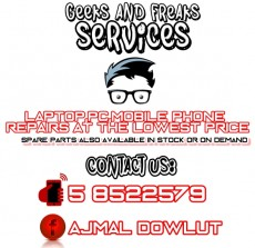 Geeks And Freaks Services - Computer repairs on Aster Vender