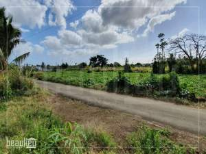 Residential land of 25 perches is for sale in L'Espérance Trébuchet