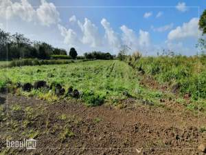 ️Agricultural land of 1 arpent is for sale in Poudre D'or Hamlet - Land on Aster Vender