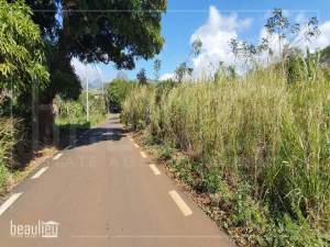 24 perches residential land in Ilot,Pamplemousses