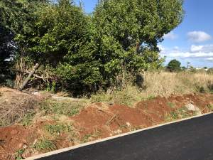 Land for sale triolet