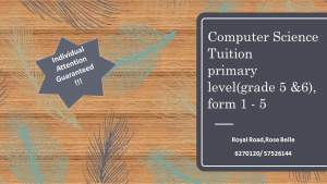 Computer science for primary and secondary pupils, Introduction to IT  - Private tuition on Aster Vender