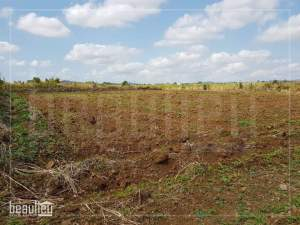 Agricutural land of 1 arpent 65 perches in Fond Du Sac - Land on Aster Vender