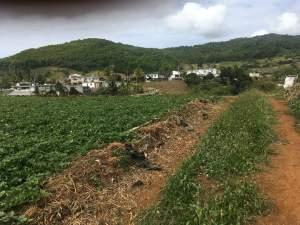 Agricultural land - Land on Aster Vender