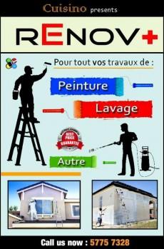 Travaux de Peinture, Lavage, autre. - Home repairs & installation on Aster Vender