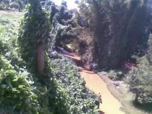 Moka terrain de 1677M2 (441 toises) situé dans un écrin de verdure - Land on Aster Vender