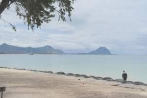 Rivière Noire magnifique  à 2 pas du lagon au clame avec une vue mer - Apartments on Aster Vender